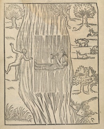 woodcut of naked man on his back in a river holding two birds