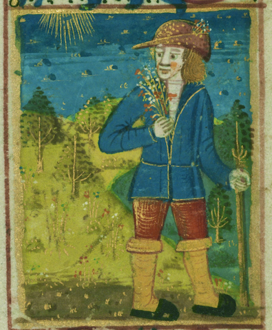 illumination of man smelling flowers in the sun