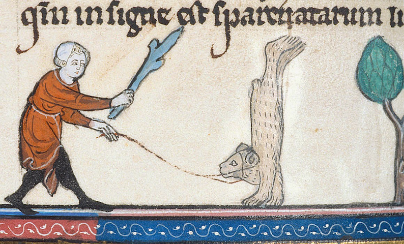marginal illustration of man wielding stick toward leashed bear doing a handstand