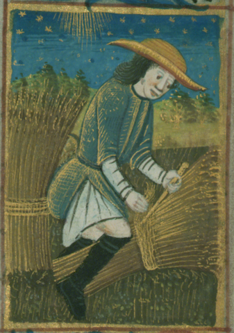 illumination of peasant working in the sun