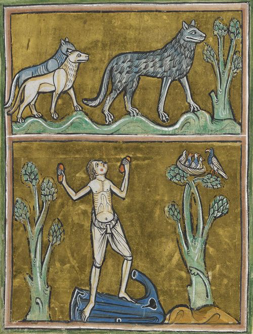 manuscript illustration of wolves and man howling at them